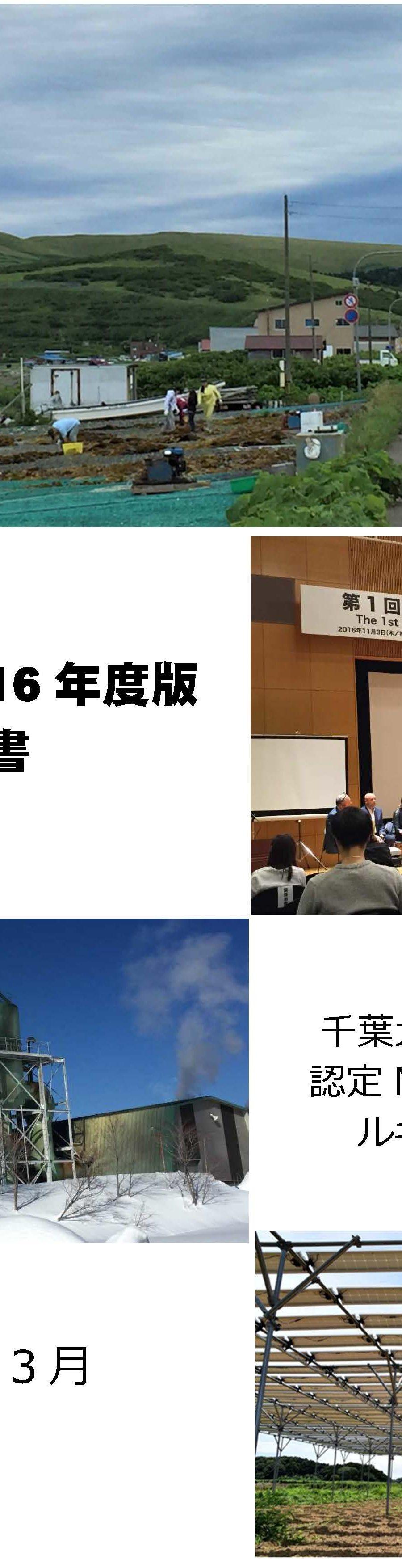 永続地帯2016 年度版報告書